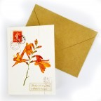 Flower Greeting Cards - Orange