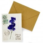 Flower Greeting Cards - Violet